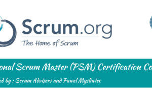 Professional Scrum Master (PSM I) (November 19 & 20, 2020)